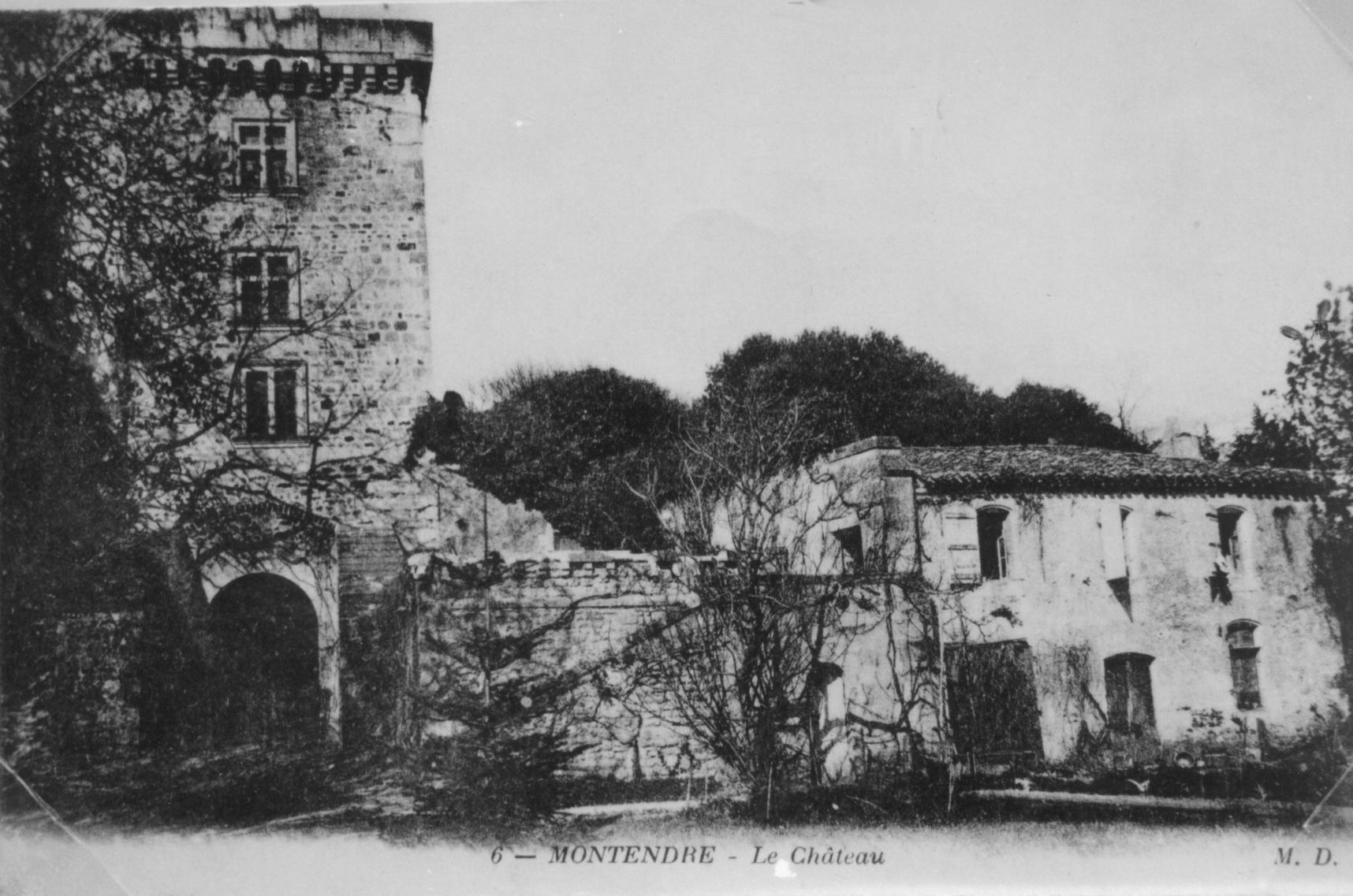 le chateau de Montendre